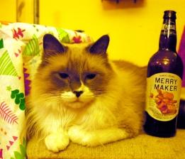 merrymakercat